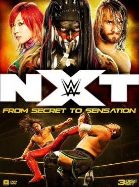 NXT フロム・シークレット・トゥ・センセーション DVD